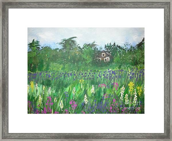 Field Of Wildflowers Framed Print