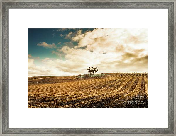 Fields Of Tasmanian Agriculture Framed Print