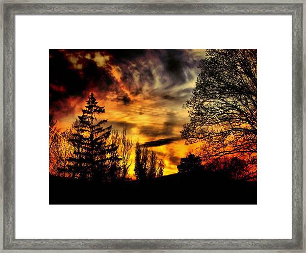 Fiery Forest Sunset Framed Print