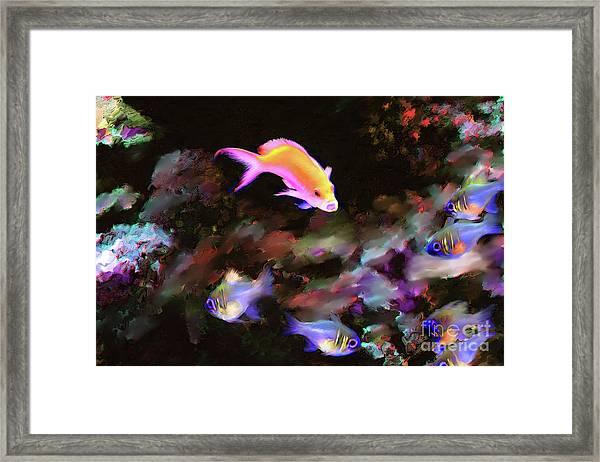 Fiesty Fish Framed Print