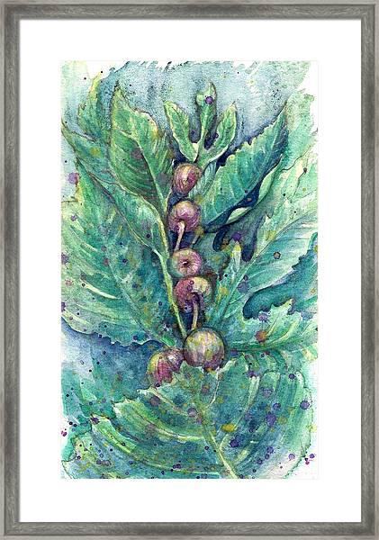 Figful Tree Framed Print