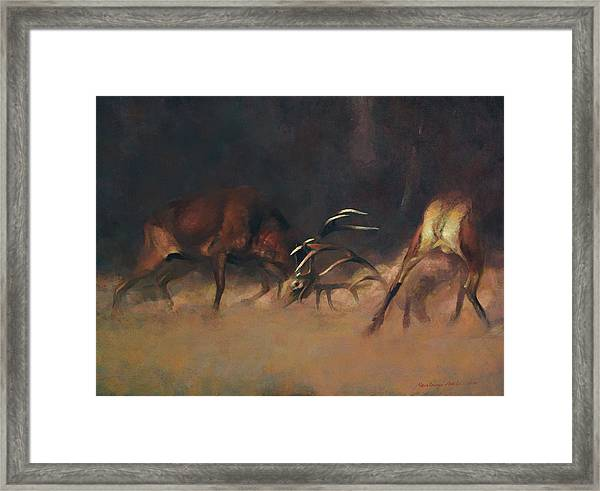Fighting Stags I. Framed Print