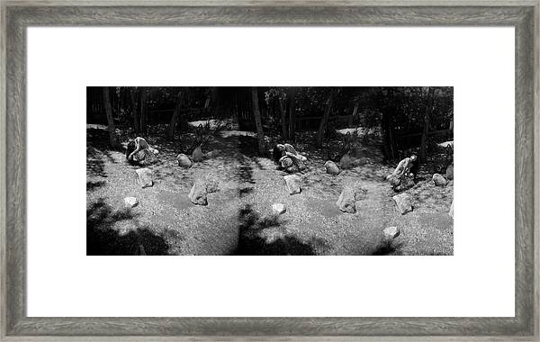 Framed Print featuring the photograph Figurative Holga Tryptich 4 by Catherine Sobredo