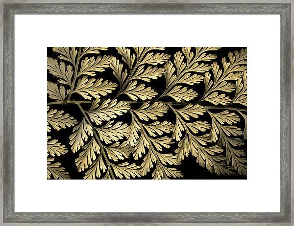 Filigree Fern Gold Framed Print