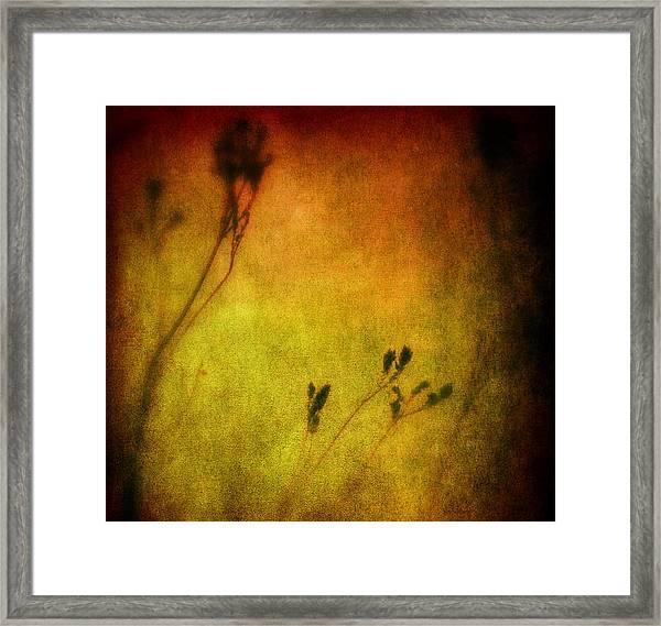 Filigree Flower Framed Print