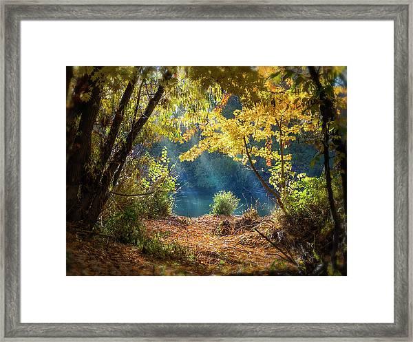 Filtered Light 3 Framed Print