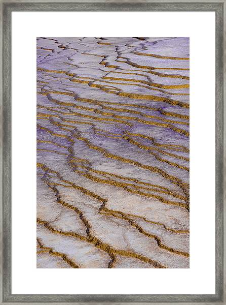 Fingerprint Of The Earth Framed Print