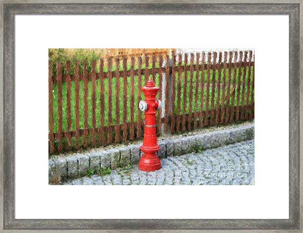 Fire Hydrant Framed Print