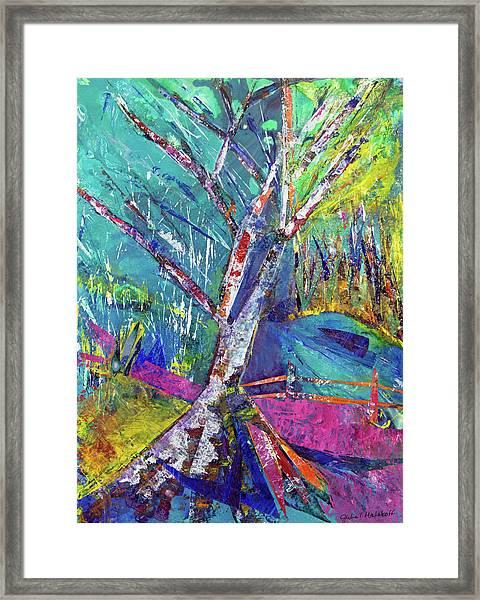 Firey Birch Framed Print