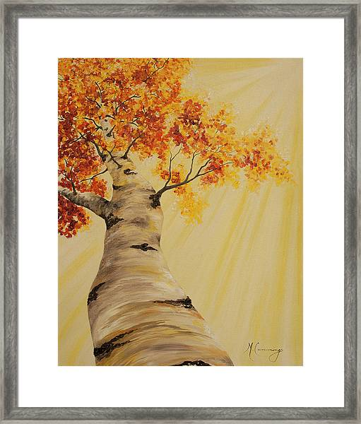 First Fall Light Framed Print