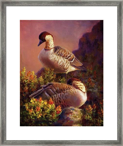 First Light Nene Hawaiian Goose Framed Print