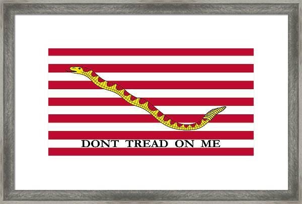 First Navy Jack Framed Print