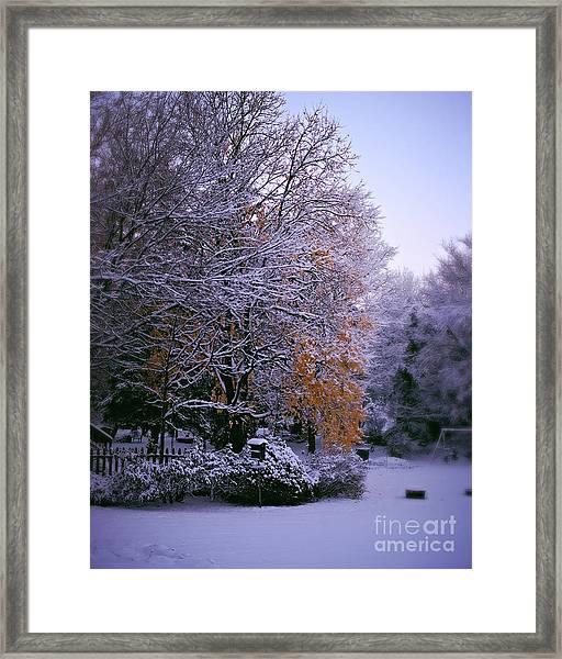 First Snow After Autumn Framed Print