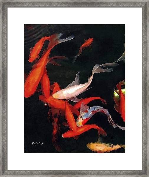 Fish Ballet Framed Print