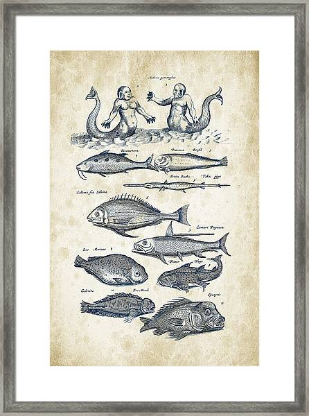 Fish Species And Creatures Historiae Naturalis 08 - 1657 - 40 Framed Print