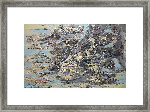 Fishes. Monotype Framed Print