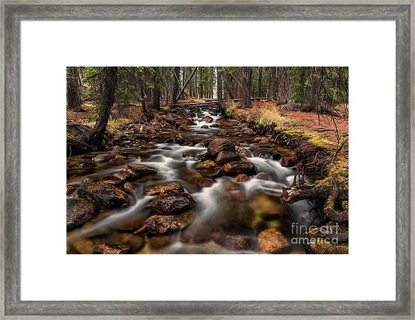 Fishhook Creek Waterscape Art By Kaylyn Franks Framed Print