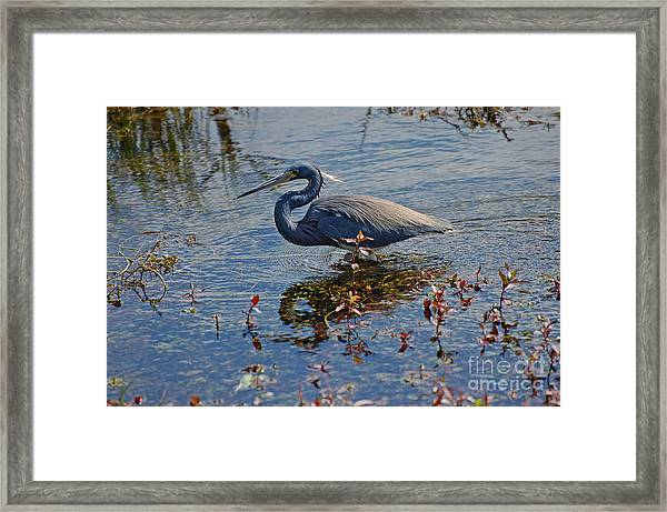 Fishing Framed Print by Henry Russell