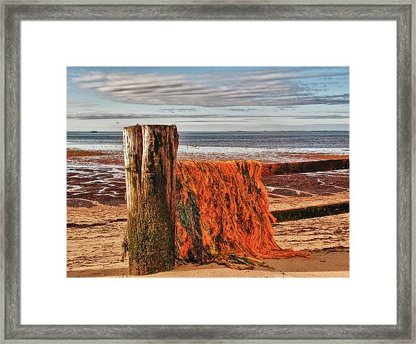 Fishing Nets In Province Town Framed Print by Linda Pulvermacher