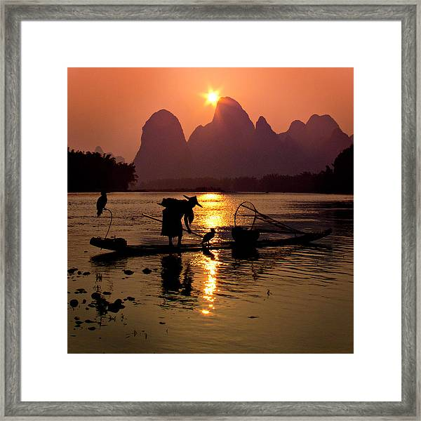 Fishing With Cormorants Framed Print
