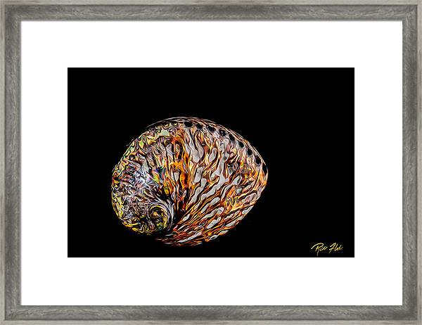 Flame Abalone Framed Print