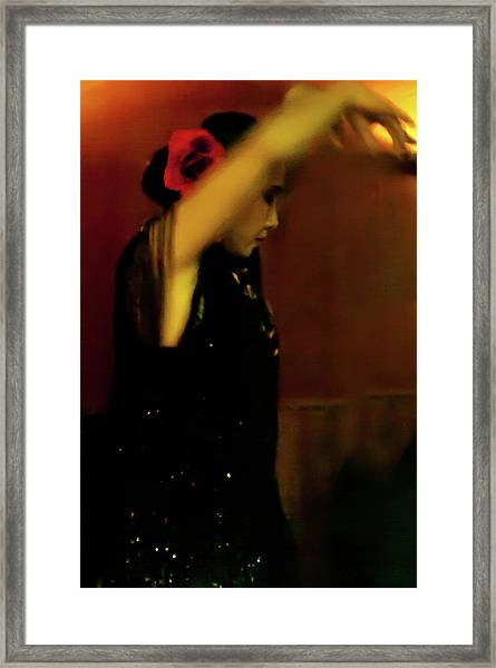 Framed Print featuring the photograph Flamenco 37 by Catherine Sobredo