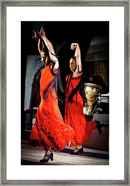 Framed Print featuring the photograph Flamenco 38 by Catherine Sobredo
