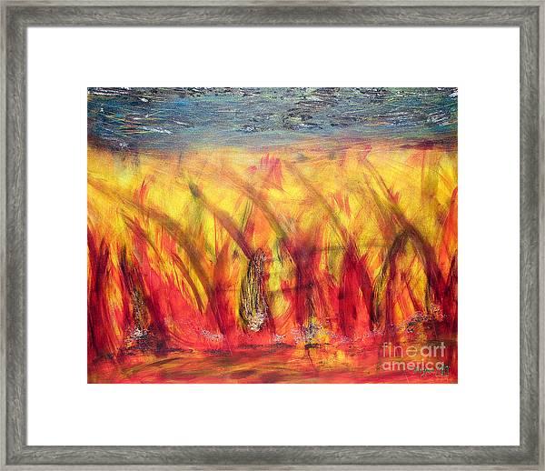 Flames Inferno Framed Print by Sascha Meyer