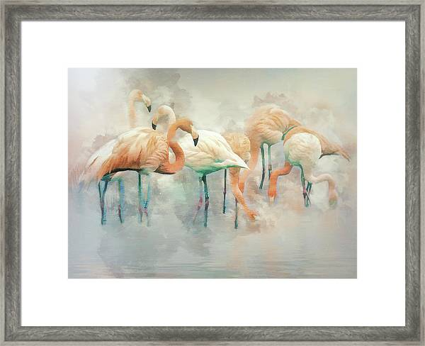 Flamingo Fantasy Framed Print