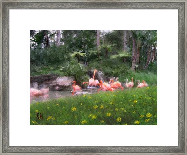 Flamingo Garden Framed Print