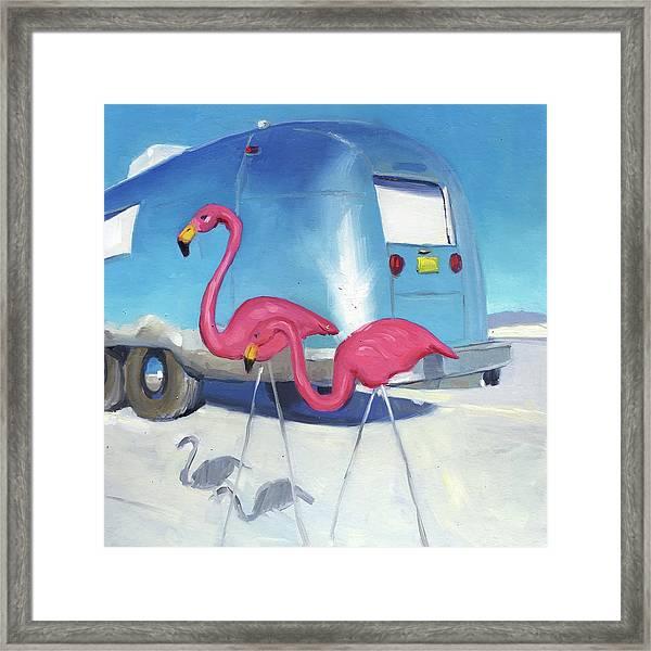 Flamingo Migration Framed Print