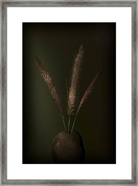 Flashlight Series 1-1 Framed Print