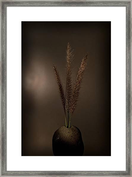 Flashlight Series 4-1 Framed Print