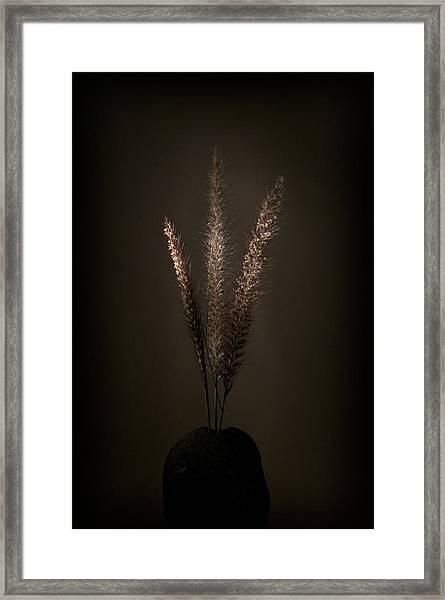Flashlight Series 5-1 Framed Print