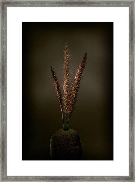 Flashlight Series 6-1 Framed Print