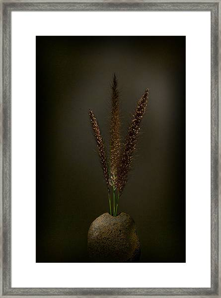 Flashlight Series 7-1 Framed Print
