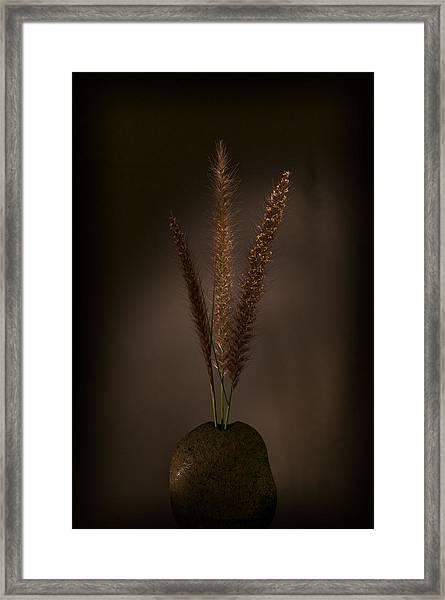 Flashlight Series 8-1 Framed Print