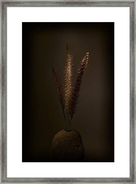 Flashlight Series 9-1 Framed Print