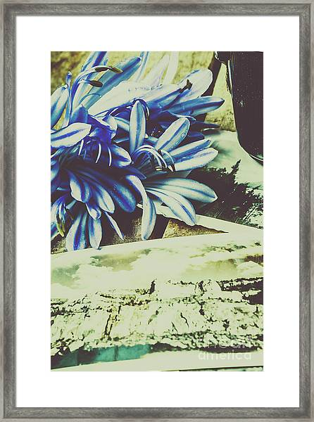 Fleeting Feelings In Past Nostalgia Framed Print