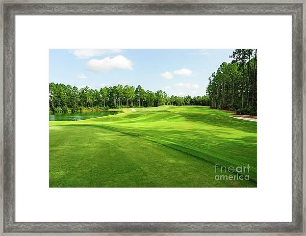 Fleming Island Golf Club Framed Print