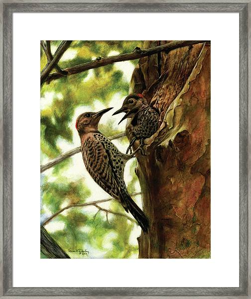 Flicker Mother And Son Framed Print