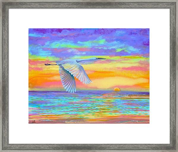 Flight Of Color Framed Print