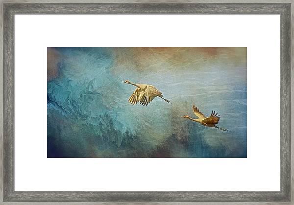 Flight Of Fantasy, Sandhill Cranes Framed Print