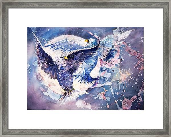 Flight Of The Doves Framed Print