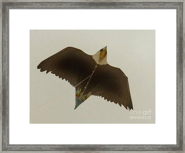 Flight Of The Eagle Framed Print