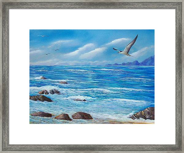 Flight Seascape Framed Print