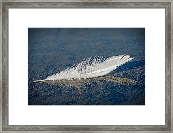 Floating Feather Reflection Framed Print