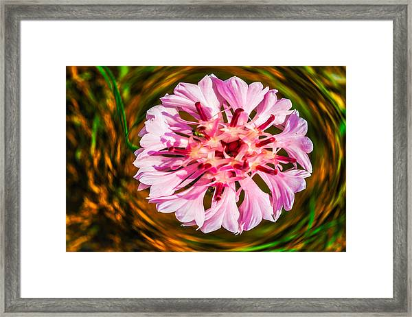Floating In Time Framed Print
