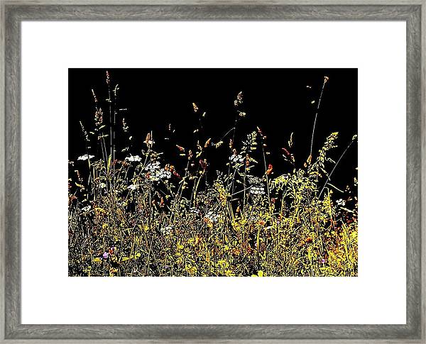 Framed Print featuring the photograph Flora Play II by HweeYen Ong