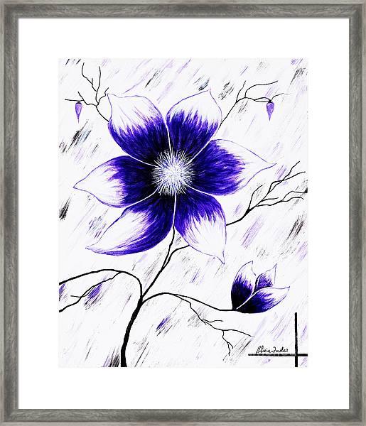 Floral Awakening Framed Print